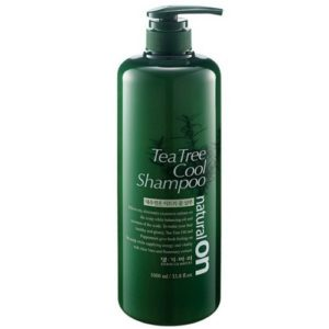 Daeng Gi meo ri Tea Tree Cool Shampoo